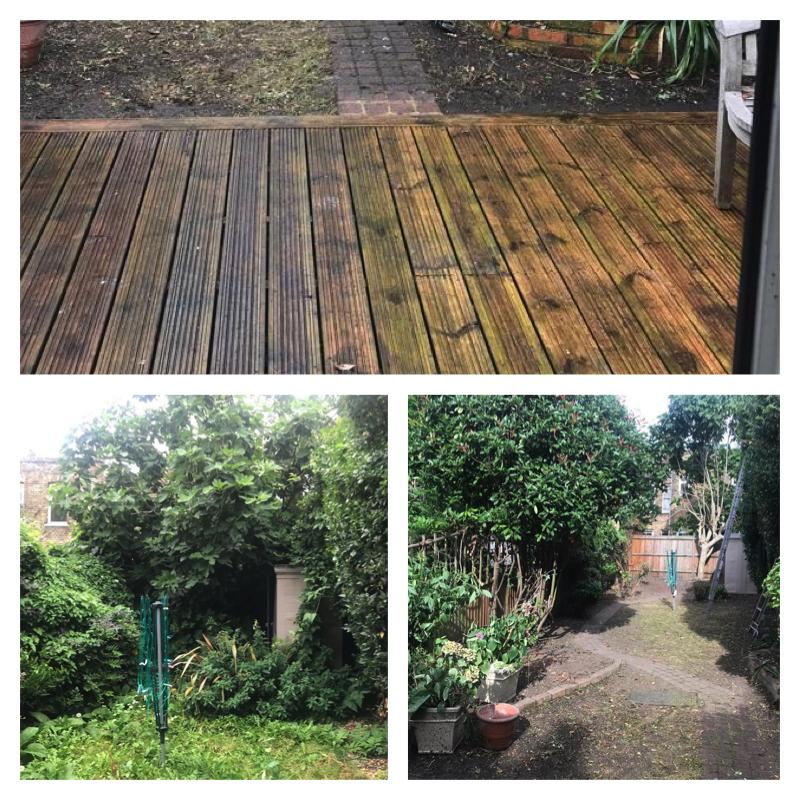 clapham-garden-clearance