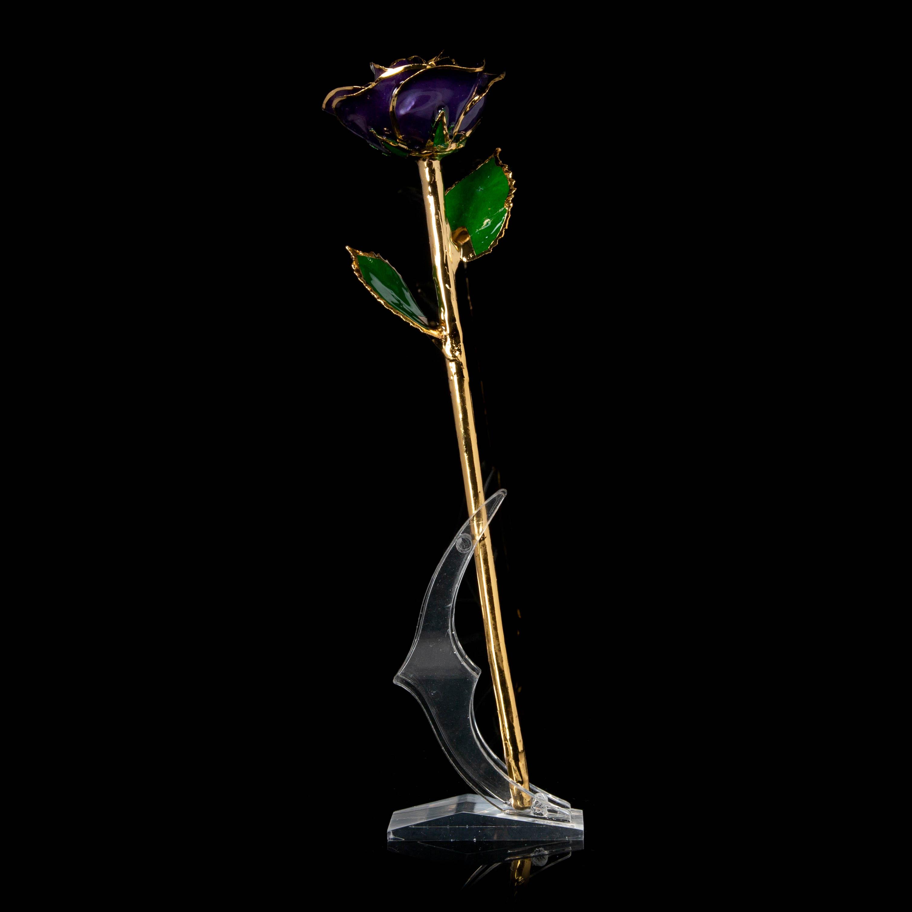 Gold Roses Purple